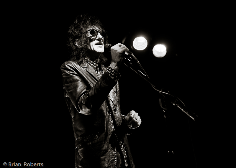 John Cooper Clarke at the microphone with haystack hair
